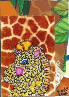 giraffes (Suzi)
