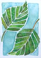 Birch leaves and Beech Sprig