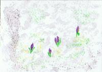 Seasons - Spring! Swap