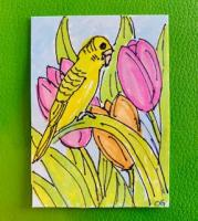 Parakeet and Tulips