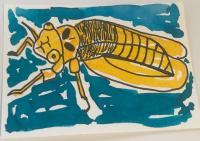 Colourful Cicadas