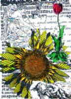 Angel Sun Flower