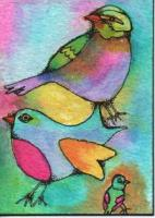"""Bird Group"""