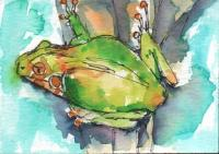 """Frog on a Tree"""