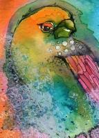 """""""Orange Headed Bird"""""""