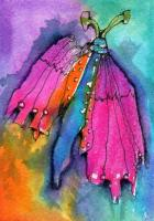 """Pink and Orange Butterfly""..."