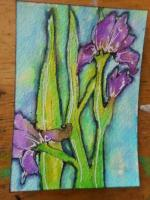 """""""Purple Irises"""""""