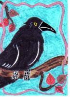 #233 Crow 1 Autumn
