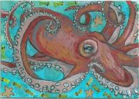 Octopus for Katilady