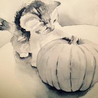 Pumpkin Kitten Value Study