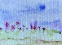 Spring Blooms 2011