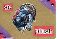 Puffy Turkey