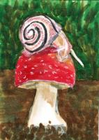 Snail on a Mushroom - May 2017 PAT