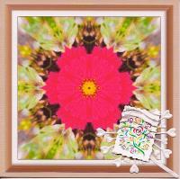 Pink Floral Kaleidoscope...